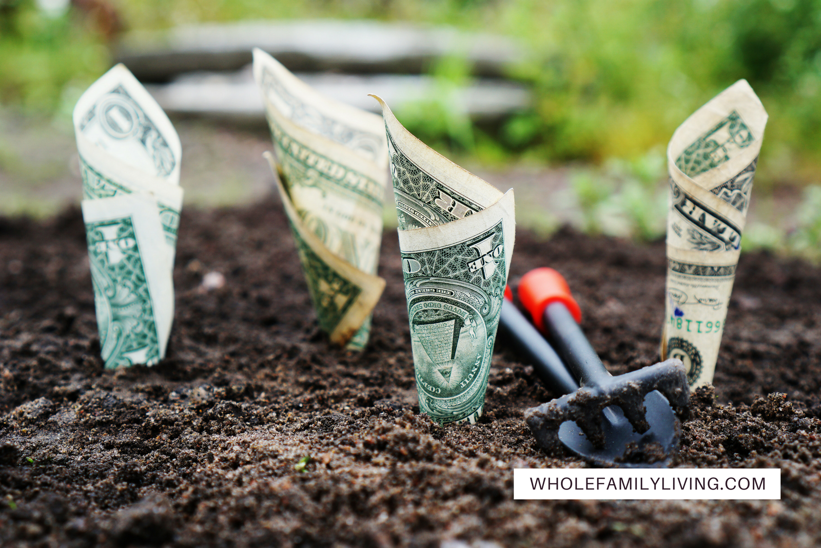 WFL Blog Post 5 keys for effective family budget