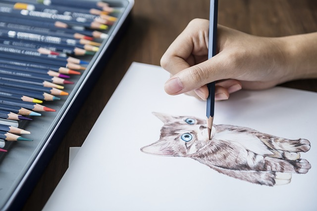 person drawing a cat