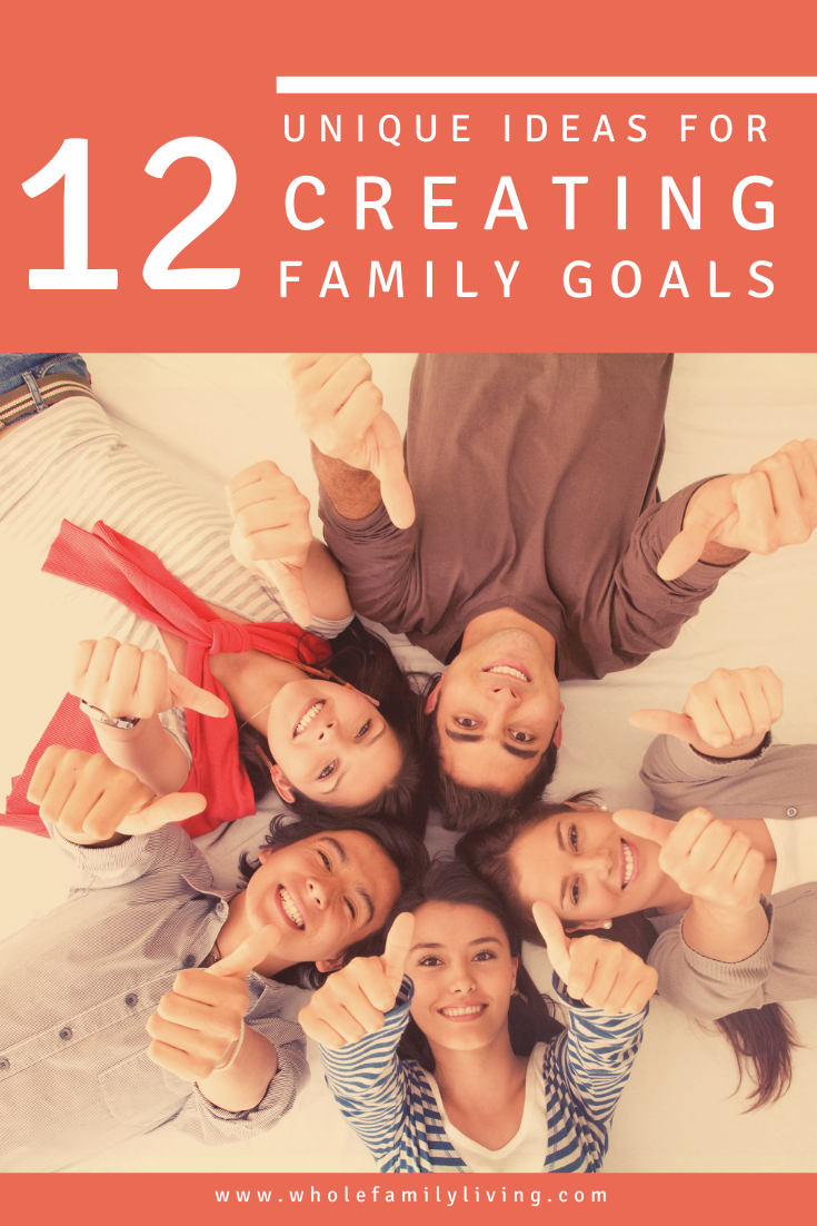 Whether it\'s the beginning of the year or the end, setting goals for the family is a worthwhile activity. Check out these 12 unique ideas for healthy goals to work on with your whole family.
